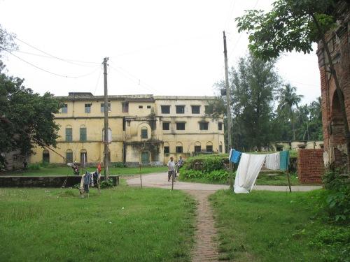Bawali (9)